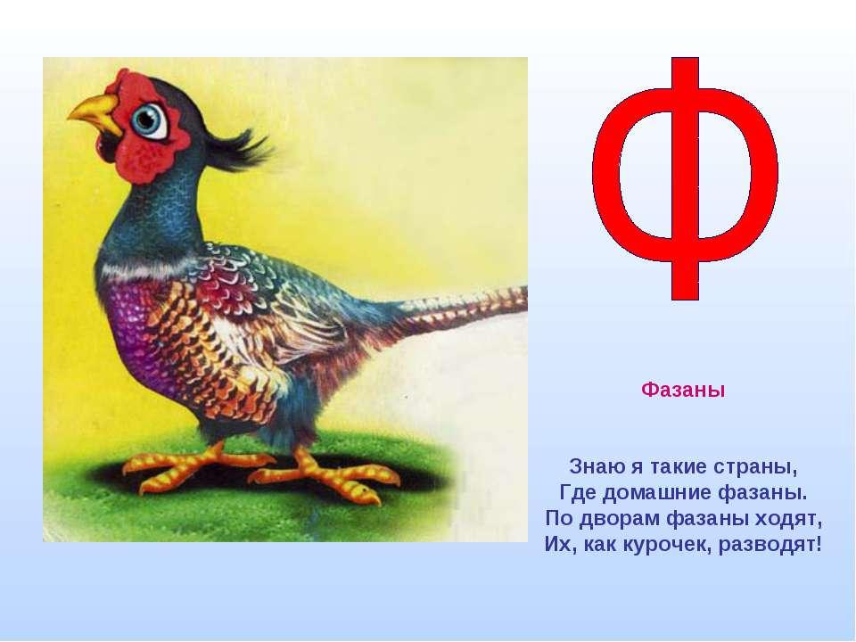 Фазаны Знаю я такие страны, Где домашние фазаны. По дворам фазаны ходят, Их, ...