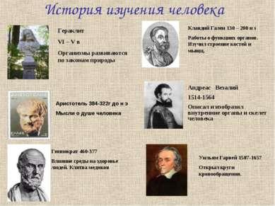 История изучения человека Гераклит VI – V в Организмы развиваются по законам ...