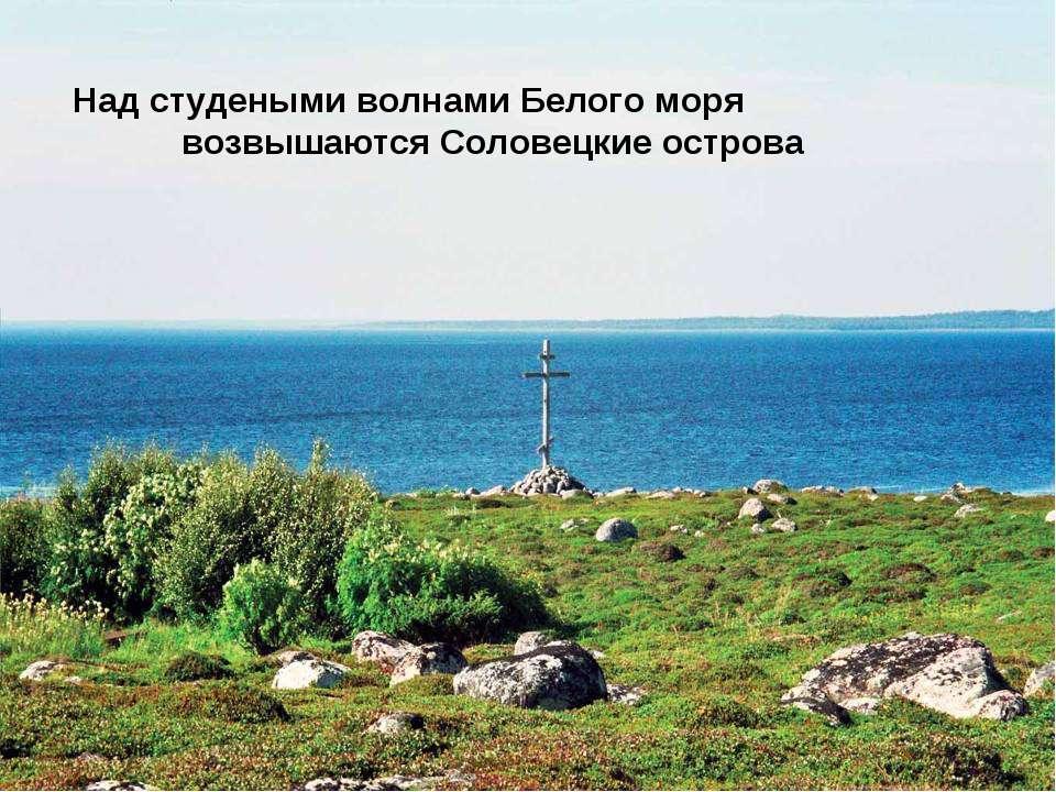 Над студеными волнами Белого моря возвышаются Соловецкие острова