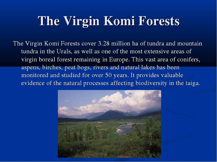 The Virgin Komi Forests The Virgin Komi Forests cover 3.28 million ha of tund...
