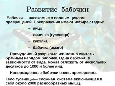 Развитие бабочки Бабочки — насекомые с полным циклом превращений. Превращения...