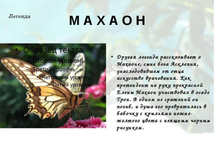 М А Х А О Н Другая легенда рассказывает о Махаоне, сыне бога Асклепия, унасле...