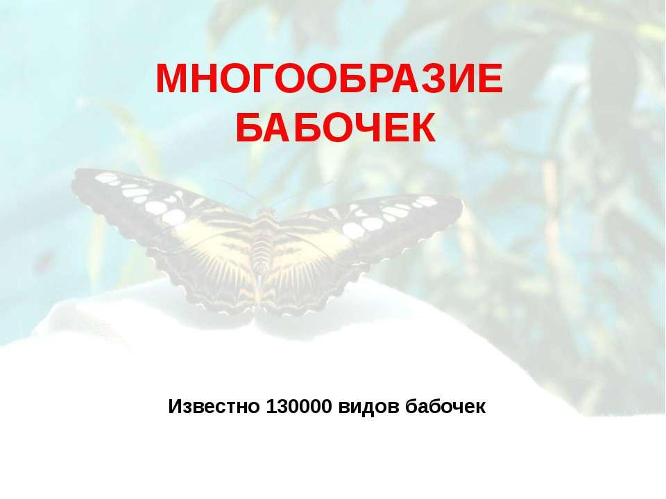 МНОГООБРАЗИЕ БАБОЧЕК Известно 130000 видов бабочек