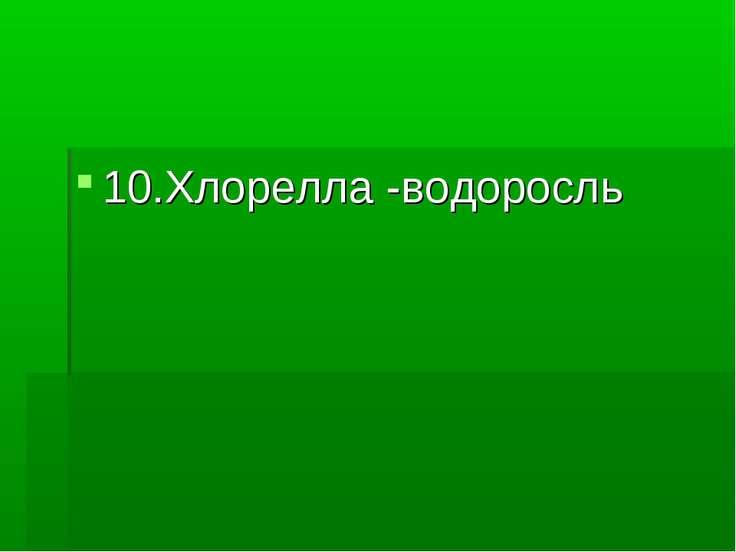 10.Хлорелла -водоросль