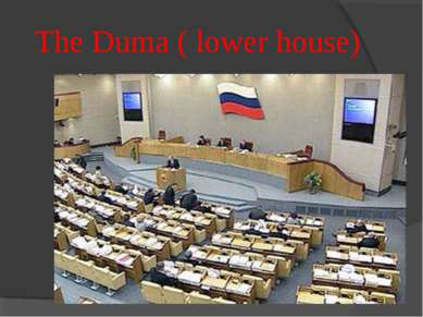 The Duma ( lower house)