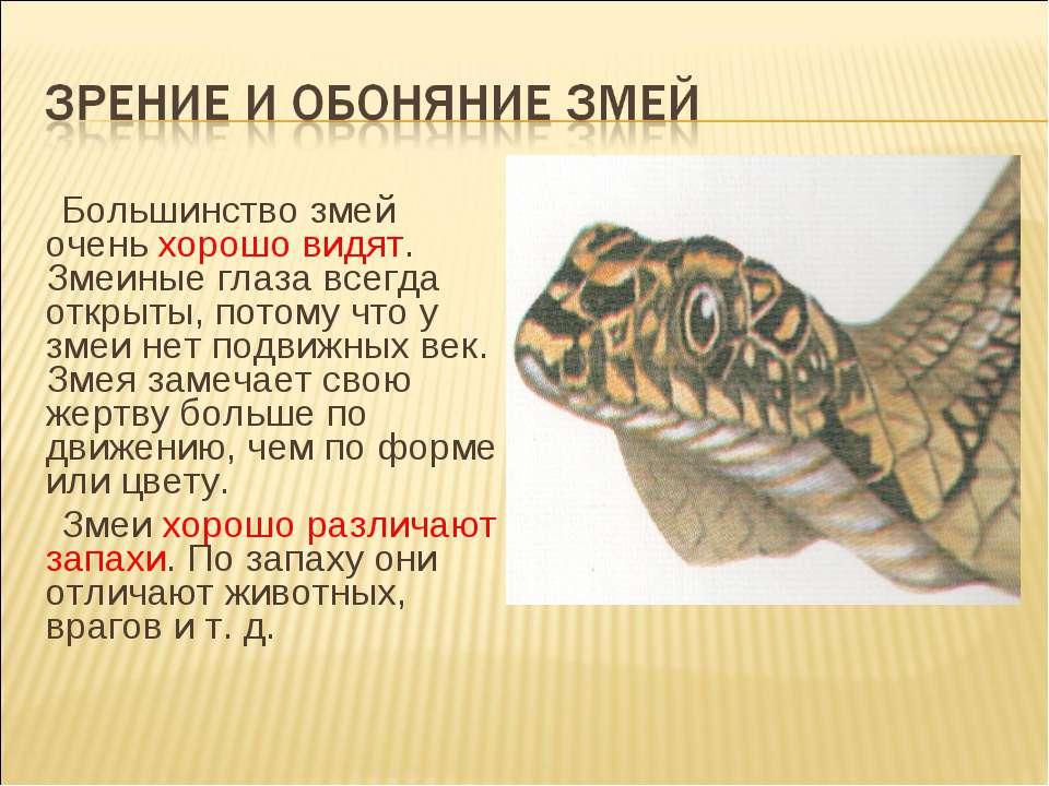 Большинство змей очень хорошо видят. Змеиные глаза всегда открыты, потому что...