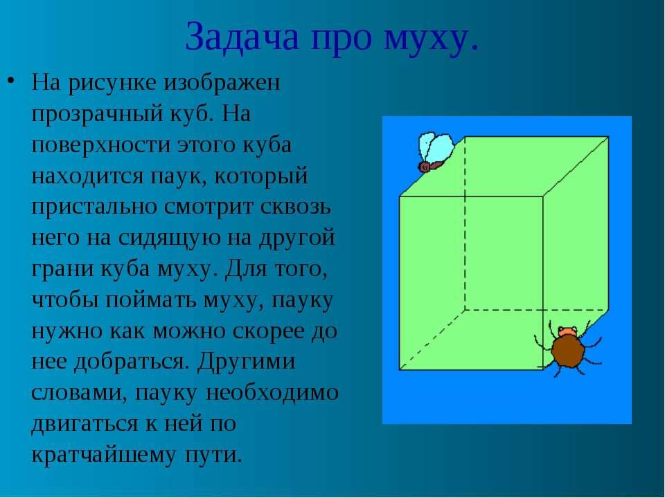Задача про муху. На рисунке изображен прозрачный куб. На поверхности этого ку...