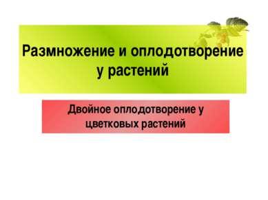Размножение и оплодотворение у растений Двойное оплодотворение у цветковых ра...