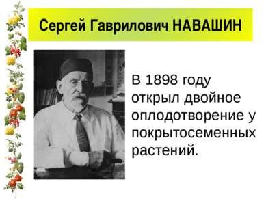 Сергей Гаврилович НАВАШИН В 1898 году открыл двойное оплодотворение у покрыто...