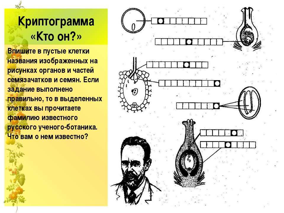 Криптограмма «Кто он?» Впишите в пустые клетки названия изображенных на рисун...
