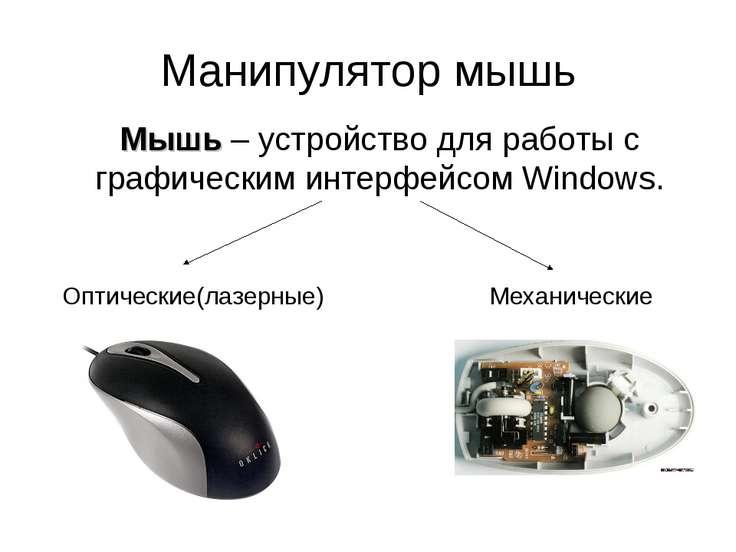 Манипулятор мышь Мышь – устройство для работы с графическим интерфейсом Windo...