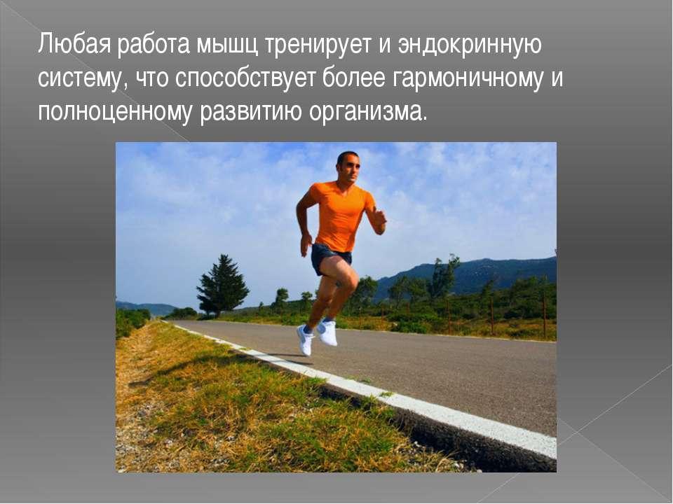 Любая работа мышц тренирует и эндокринную систему, что способствует более гар...