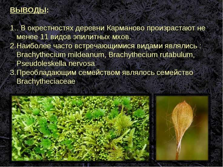 ВЫВОДЫ: . В окрестностях деревни Карманово произрастают не менее 11 видов эпи...