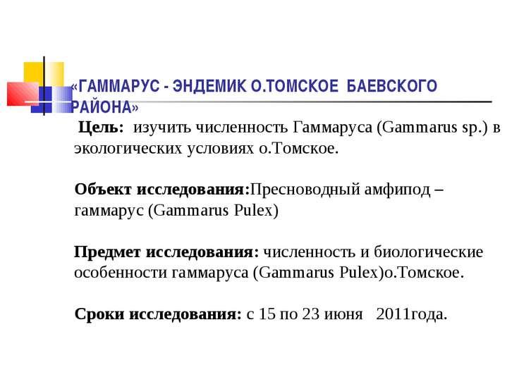 «ГАММАРУС - ЭНДЕМИК О.ТОМСКОЕ БАЕВСКОГО РАЙОНА» Цель: изучить численность Гам...