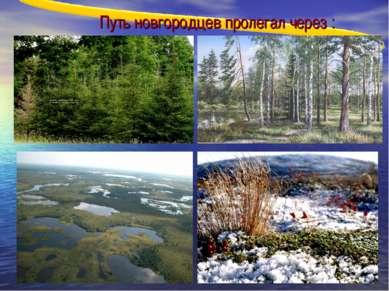 Путь новгородцев пролегал через :