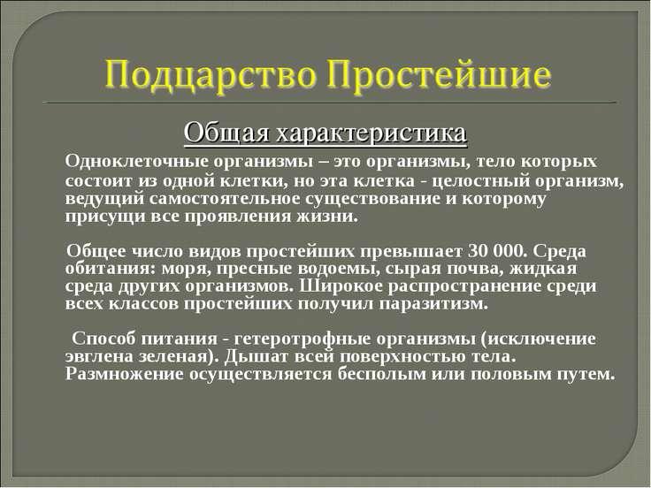Общая характеристика Одноклеточные организмы – это организмы, тело которых со...