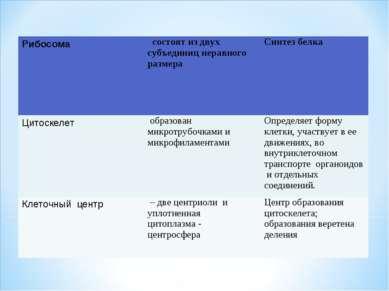 Рибосома состоят из двух субъединиц неравного размера Синтез белка Цитоскелет...