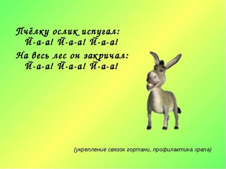 Пчёлку ослик испугал: Й-а-а! Й-а-а! Й-а-а! На весь лес он закричал: Й-а-а! Й-...