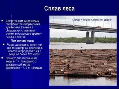 Сплав леса Является самым дешевым способом транспортировки древесины. Раньше ...
