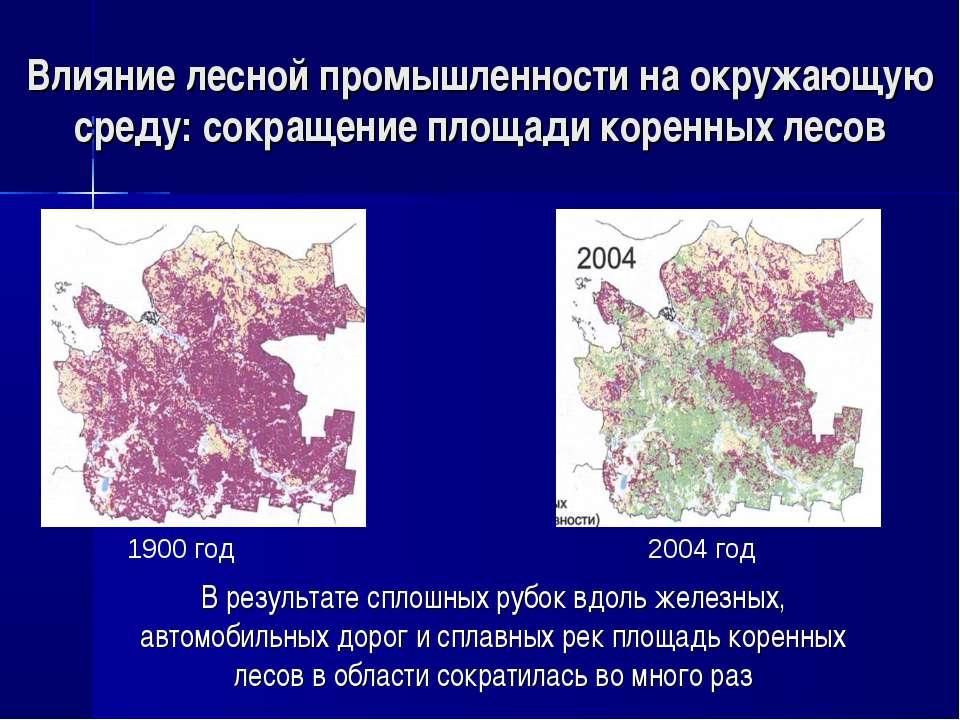 Влияние лесной промышленности на окружающую среду: сокращение площади коренны...