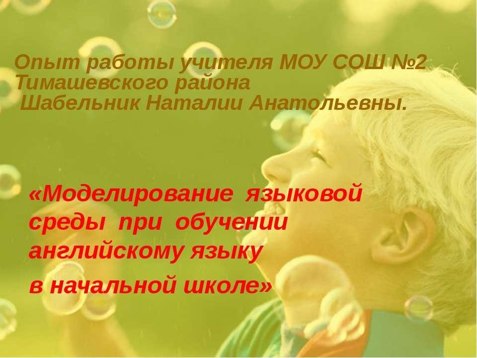 Опыт работы учителя МОУ СОШ №2 Тимашевского района Шабельник Наталии Анатолье...