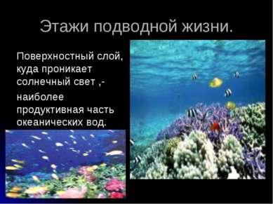 Этажи подводной жизни. Поверхностный слой, куда проникает солнечный свет ,- н...