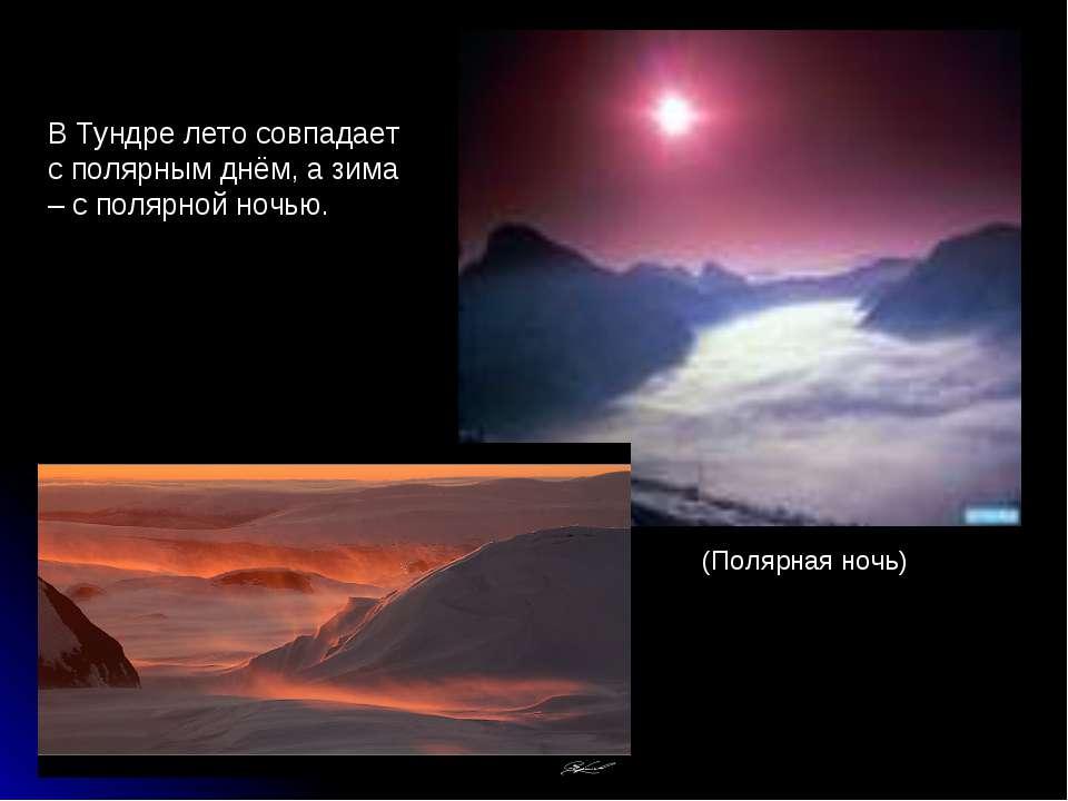 В Тундре лето совпадает с полярным днём, а зима – с полярной ночью. (Полярная...