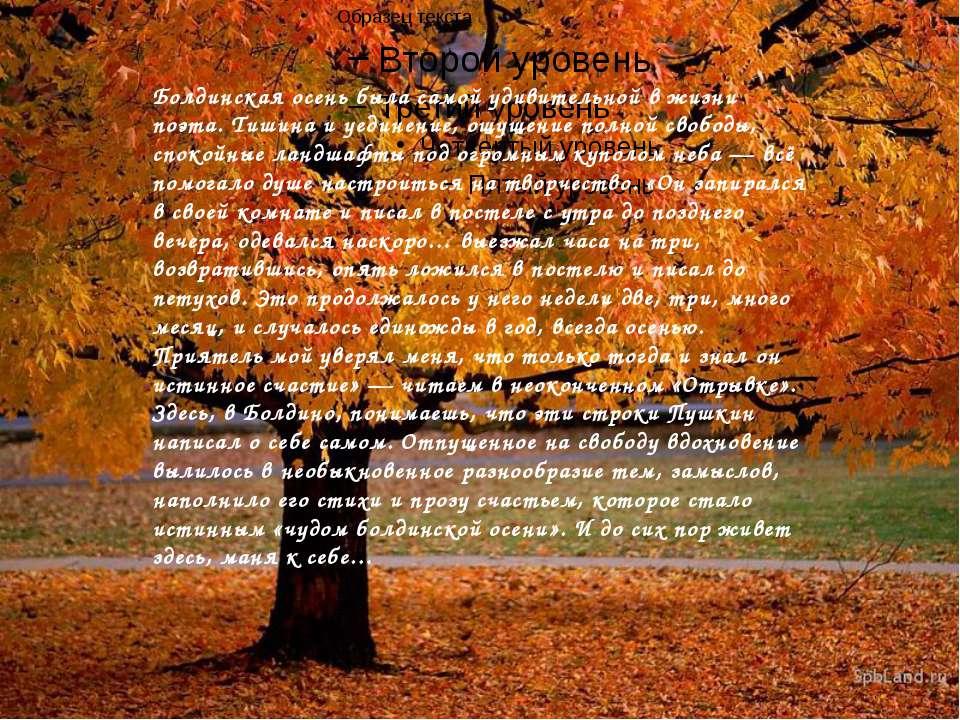 Болдинская осень была самой удивительной в жизни поэта. Тишина и уединение, о...