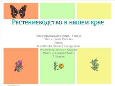 Растениеводство в нашем крае Урок окружающего мира, 4 класс УМК «Школа России...
