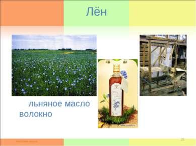 Лён льняное масло волокно *