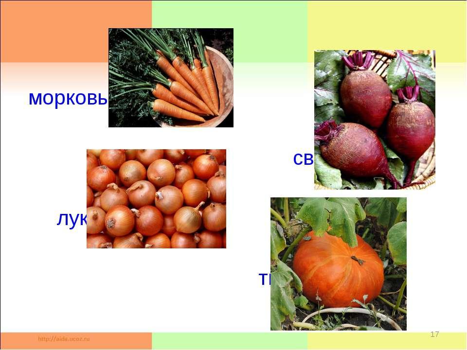 морковь свёкла лук тыква *