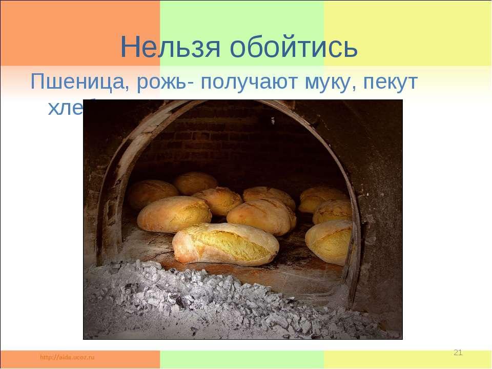 Нельзя обойтись Пшеница, рожь- получают муку, пекут хлеб. *