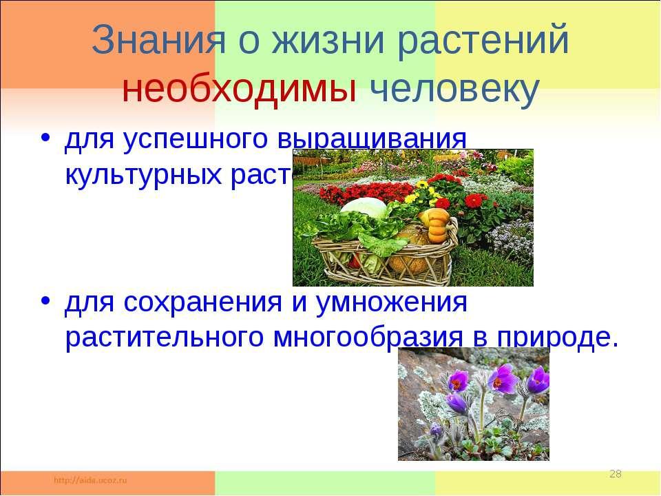 Знания о жизни растений необходимы человеку для успешного выращивания культур...