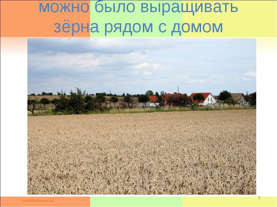 можно было выращивать зёрна рядом с домом *