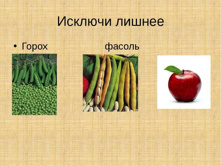 Исключи лишнее Горох фасоль яблоко