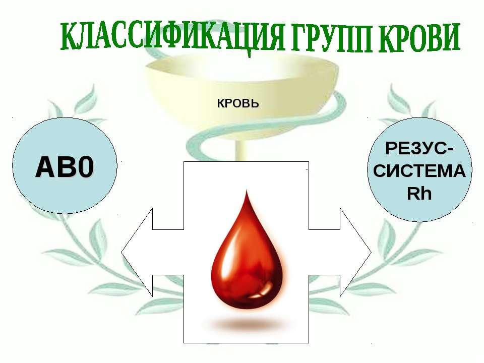 КРОВЬ АВ0 РЕЗУС- СИСТЕМА Rh