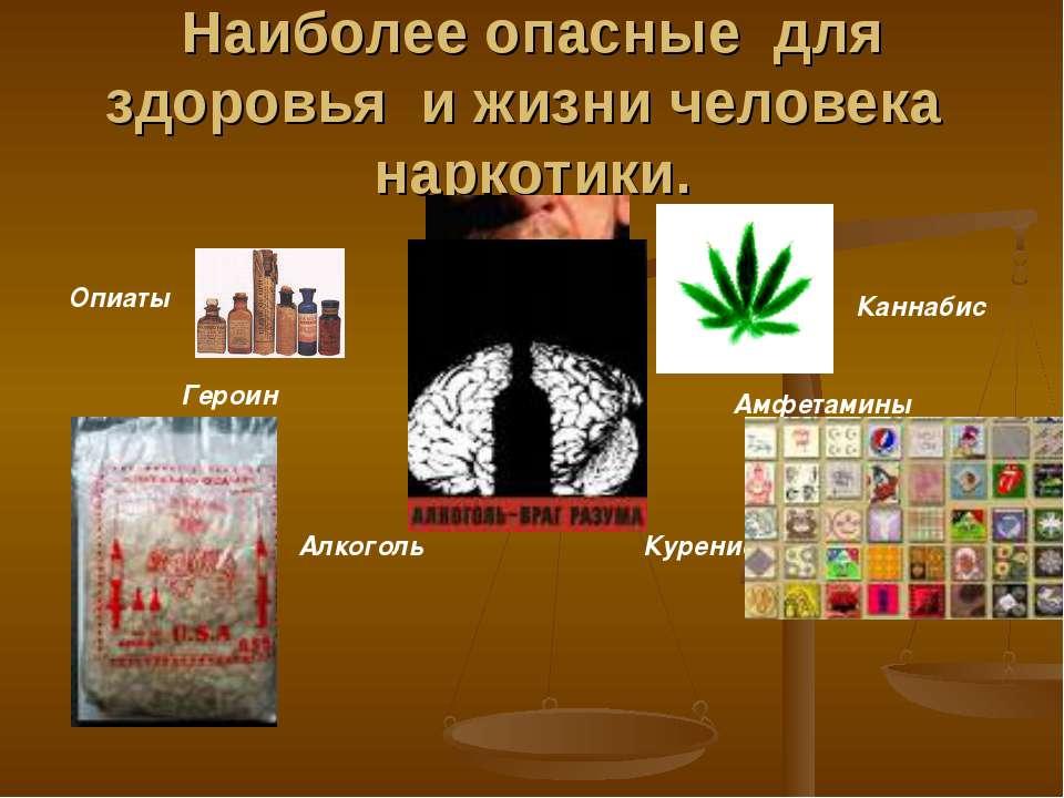 Наиболее опасные для здоровья и жизни человека наркотики. Героин Каннабис Амф...
