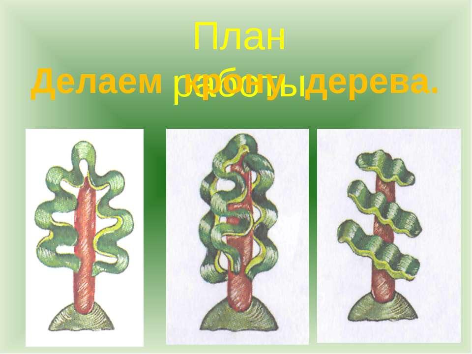 План работы Делаем крону дерева.
