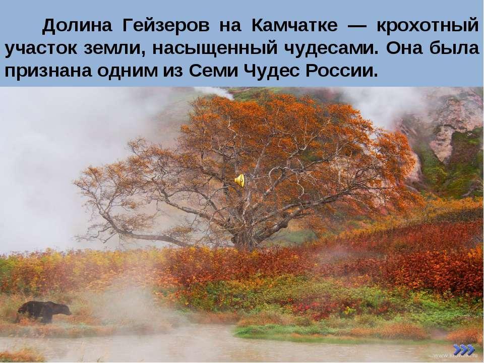 Долина Гейзеров на Камчатке — крохотный участок земли, насыщенный чудесами. О...