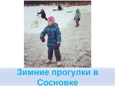 Зимние прогулки в Сосновке