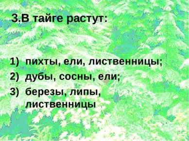 3.В тайге растут: пихты, ели, лиственницы; дубы, сосны, ели; березы, липы, ли...