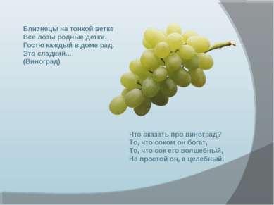 Что сказать про виноград? То, что соком он богат, То, что сок его волшебный, ...