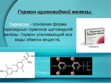 Гормон щитовидной железы. Тироксин - основная форма тиреоидных гормонов щитов...