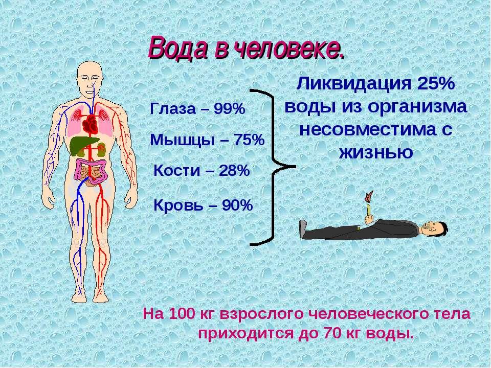 Вода в человеке. Кровь – 90% Мышцы – 75% Кости – 28% Глаза – 99% Ликвидация 2...
