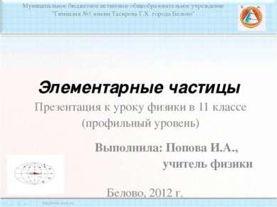Элементарные частицы Муниципальное бюджетное нетиповое общеобразовательное уч...