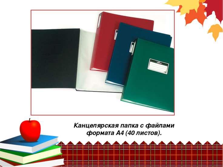 Канцелярская папка с файлами формата А4 (40 листов).
