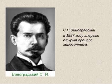 С.Н.Виноградский в 1887 году впервые открыл процесс хемосинтеза.