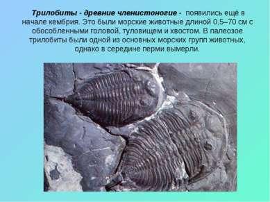 Трилобиты - древние членистоногие - появились ещё в начале кембрия. Это были ...