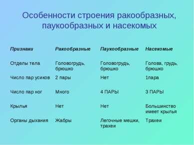 Особенности строения ракообразных, паукообразных и насекомых Признаки Ракообр...