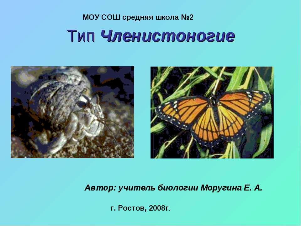 Тип Членистоногие МОУ СОШ средняя школа №2 Автор: учитель биологии Моругина Е...